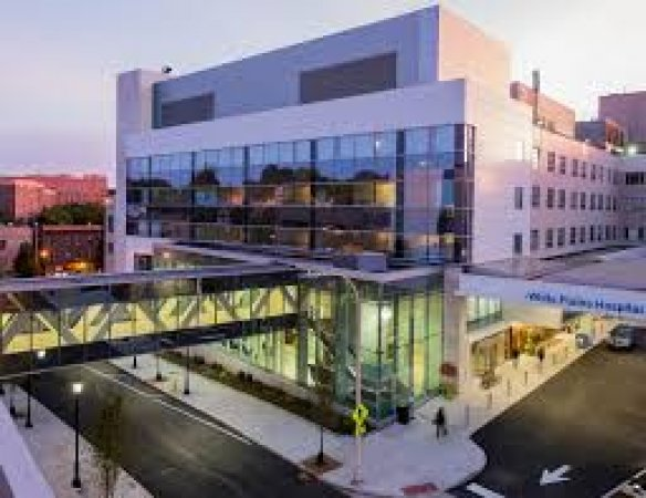 Director Wound Care job opportunity with White Plains Hospital- 25 miles from Manhattan